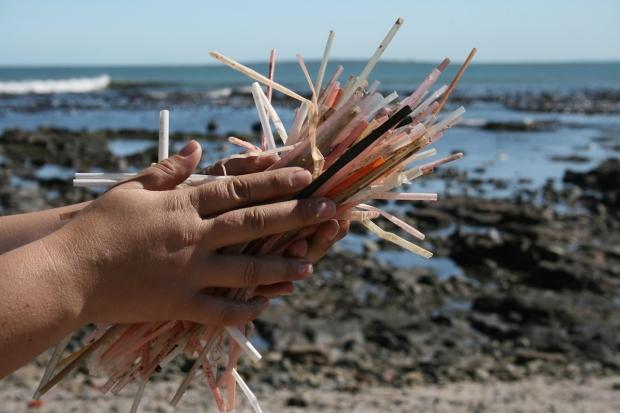 beach-straws
